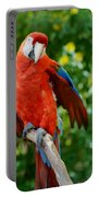 Macaws Of Color30 Portable Battery Charger