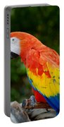 Macaws Of Color33 Portable Battery Charger