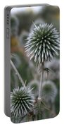 Macro Seed Head Of Round Headed Garlic  Portable Battery Charger