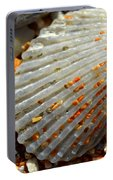 Macro Shell On Sand 4 Portable Battery Charger by Riad Belhimer