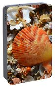 Macro Shell On Sand Portable Battery Charger
