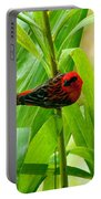 Madagascar Fody On Palm Tree Portable Battery Charger