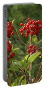 Madrone Berries Portable Battery Charger