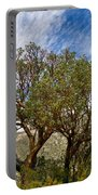 Madrone Trees Portable Battery Charger