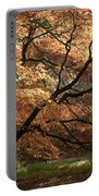 Magnificent Autumn Portable Battery Charger by Anne Gilbert