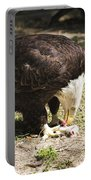 Magnificent Bald Eagle Breakfast Portable Battery Charger