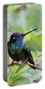 Magnificent Hummingibrd Male Portable Battery Charger