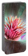 Magnolia Flower - Photopower 1844 Portable Battery Charger