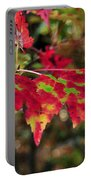 maine 37 Maple Leaf Fall Foliage Portable Battery Charger