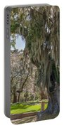 Majestic Live Oak Tree Portable Battery Charger