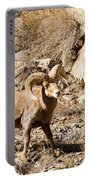 Majestic Bighorn Portable Battery Charger