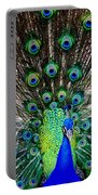 Majestic Blue Portable Battery Charger