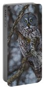 Majestic Owl Portable Battery Charger