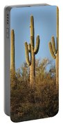 Majestic Saguaros Portable Battery Charger