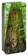 Majestic Spirit Collection 2 Portable Battery Charger