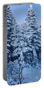 Majestic Winter Wonderland Portable Battery Charger