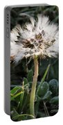 Make A Wish Portable Battery Charger