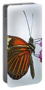 Malay Lacewing Portable Battery Charger