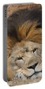 Male African Lion Portable Battery Charger