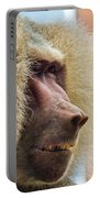 Male Baboon Portable Battery Charger