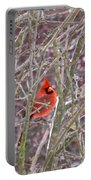 Male Cardinal Cold Day 2 Portable Battery Charger