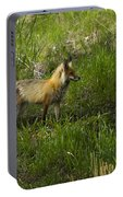 Male Fox   #3521 Portable Battery Charger