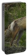 Male Fox And Pup   #3554 Portable Battery Charger