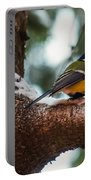 Male Great Tit Portable Battery Charger