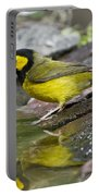 Male Hooded Warbler Portable Battery Charger
