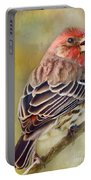 Male House Finch - Digital Paint Portable Battery Charger