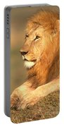 Male Lion Portable Battery Charger