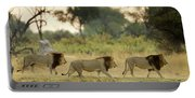 Male Lions At Dawn, Moremi Game Portable Battery Charger