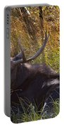 Male Moose   #3865 Portable Battery Charger