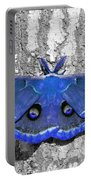 Male Moth - Brilliant Blue Portable Battery Charger