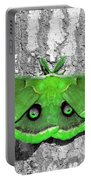 Male Moth Green Portable Battery Charger by Al Powell Photography USA