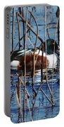 Male Northern Shoveler Lacassine Nwr Portable Battery Charger