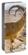 Male Nubian Ibex Capra Ibex Nubiana Portable Battery Charger