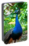 Male Peacock Portable Battery Charger