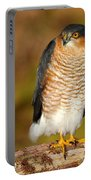 Male Sparrowhawk Portable Battery Charger