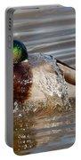 Mallard Drake Bathing Portable Battery Charger