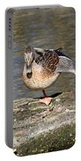 Mallard Duck Stretch  Portable Battery Charger