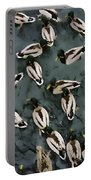 Mallard Ducks On A Pond Portable Battery Charger
