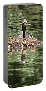 Mallard Hen With Ducklings And Reflection Portable Battery Charger