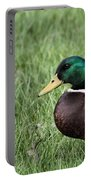 Mallard In The Grass Portable Battery Charger