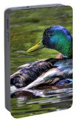 Mallard Tone Mapped Portable Battery Charger