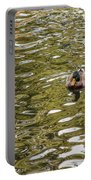 Mallards On Golden Pond 1 Portable Battery Charger