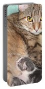 Mama Cat And Her Kittens Portable Battery Charger