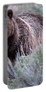 Mama Grizzly Portable Battery Charger