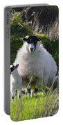 Mama Sheep And Her Two Lambs Portable Battery Charger