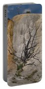Mammoth Formation  #0290 Portable Battery Charger